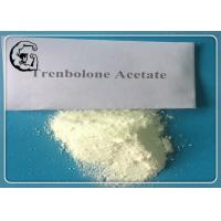 China Bulking Cycle Trenbolone Steroid Trenbolone Acetate Anadrol Tren Ace Powder wholesale