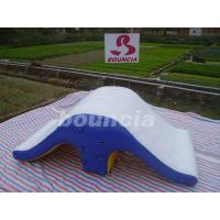China  Commercial Grade PVC Tarpaulin Backyard Inflatable Water Slide WS07  for sale