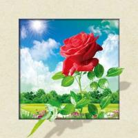 China Waterproof Flower Images 5d 3D Lenticular Pictures 40x40cm For Restaurant wholesale