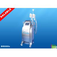 1  Two handles Cryolipolysis /coolsculpting body slimming machine BRG80s