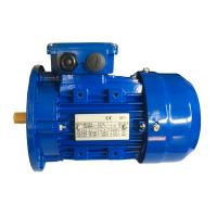 China MS 56 Frame 3 Phase Induction Motor With Flexible Foot Amount on sale
