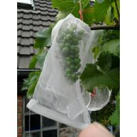 Buy cheap 100% HDPE UV Radiation Agents 3% Fruit Tree Covers , Bags To Cover Fruit On from wholesalers