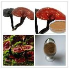 Quality Reishi Mushroom Extract, Chinese manufacture supply, Reishi Mushroom Polysaccharides 10%, Shaan xi Yongyuan Bio-Tech for sale
