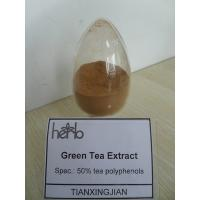 China Green Tea Extract,Camellia sinensis,Polyphenol 98%,Catechins 80%,EGCG 60%,Caffeine 0.5% wholesale