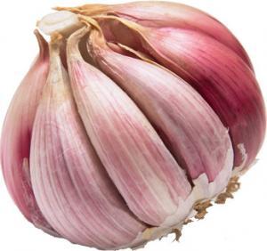 China Normal Red garlic 4.5cm-5.0cm wholesale