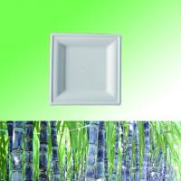 "China 100% Sugarcane Bagasse pulp biodegradable disposable 6"" 8"" 10"" Square plate wholesale"