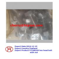 China TITANIUM hex head bolt with nut on sale