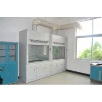 Quality Anti Acid Laboratory Fume Hood , PP Cup Sink Chemical Fume Cupboard for sale