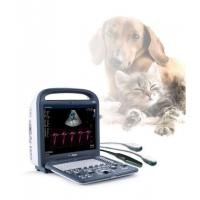 Wholesale Portable Medical Veterinary Equipment Color Doppler Ultrasound Scanner With Good Image from china suppliers