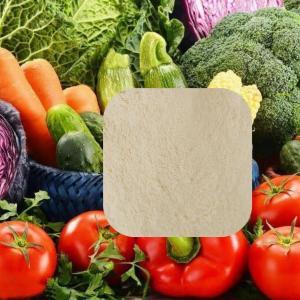 China Light Yellow Amino Acid Organic Fertilizer Powder 70% Improve Plants Quality wholesale