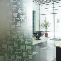 China Modern Opaque Decorative Glass Etched Frosted Glass Partitions For Shower Room on sale