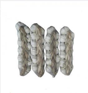 China Dried Pure White Garlic wholesale
