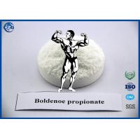 China Muscle Building Steroids Hormone Powder , 99% Purity Boldenone Propionate wholesale