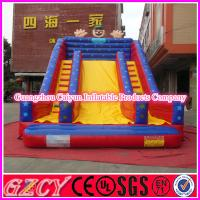 China Inflatable Slide Double Lane Slide With CE Blower wholesale