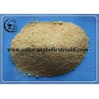 China 99% Light Yellow Trenbolone Base Muscle Bodybuilding Steroid Powder CAS 10161-33-8 wholesale