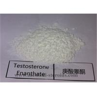 Buy cheap 99.5% Purity USP Standard Steroid Testosterone Enanthate CAS 315-37-7 for Bodybuilding and Muscle Gain from wholesalers