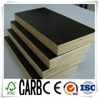 China Water Proof Black Film Faced Plywood with WBP Glue wholesale