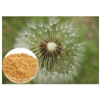 Dandelion Root Plant Extract Powder Brown Color HPLC 5% Food Grade Anti - Aging