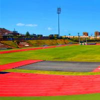 China Comfortable Athletic Track Surfaces / Soft Synthetic Athletic Track on sale