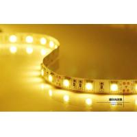 China DC12/24V 5m IP65 LED Strips Light , Energy saving Led flexible strip lights wholesale