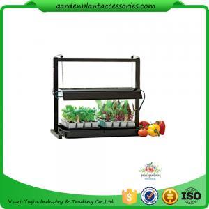 China Countertop Grow Light Garden Starter Kit / Plant Starter Kit With Seed Starting Trays wholesale
