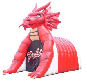 China ustom inflatable football tunnel , Football inflatable dragon mascot tunnel wholesale