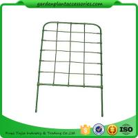 China Green Color Plastic Coated Metal Freestanding Garden Flower Trellis For Climbing Plants wholesale