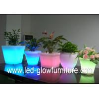 China Beautiful Color changing led lighted flower pots outdoor  ,Illuminated LED Ice Bucket / cooler wholesale