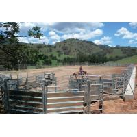"China Portable Horse Pens For Sale 1.5m Gate. Locking Pins. "". Victoria "" wholesale"