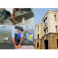 Wholesale Interior / Exterior Wall Ceramic Wall Tile Adhesive Fast Setting from china suppliers
