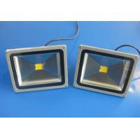 Quality High efficiency IP65 Waterproof 30W Outdoor LED Floodlight bulbs fixtures for for sale