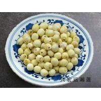 Buy cheap white lotus seeds from wholesalers