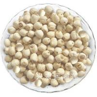 Buy cheap Lotus Seed with No Core from wholesalers