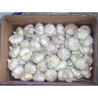 China 10kg Bulk carton wholesale