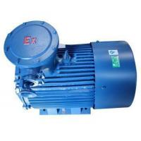 Explosion-proof Three-phase Induction Motor Yb2 Series