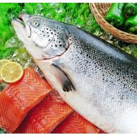 FISH PRODUCTS Salmon