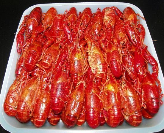 Quality LOBSTER SERIES Block Frozen Whole Cooked Crywfish Unseasoned for sale