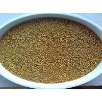 Cereals Chinese Yellow Millet