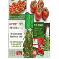 China TV shopping Tomato_Planter-01 wholesale