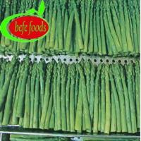 China Green asparagus(fresh,frozen) Product Name:IQFGREENASPARAGUSSPEARS on sale