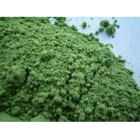 Wholesale Barley Grass Powder(Organic Green,Spary Dried Powder) from china suppliers