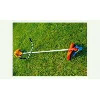 Wholesale Brush Cutter from china suppliers