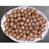 Buy cheap lotus seeds without cor… from wholesalers