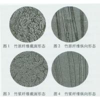 China The comparison between Original bamboo fiber and Bamboo pulp fiber wholesale