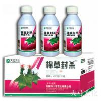 Wholesale Cottonweedsforcedout from china suppliers