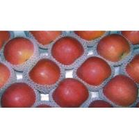 China FRESH VEGETABLE,FRUITS AND NUTS Fresh Apple wholesale