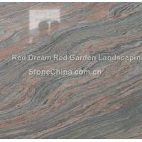 Wholesale Red Dream Red Garden Landscaping from china suppliers