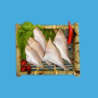 China Aquatic Product Series Cuted Yellowfin Filefish wholesale