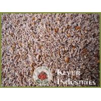 Buy cheap Psyllium Seed from wholesalers