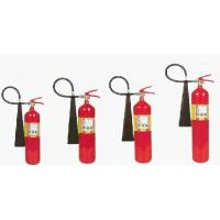 PS2:PORTABLE CO2 FIRE EXTINGUISHER (CARBON-STEEL)